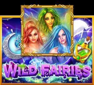 รีวิวเกม Wild Fairies