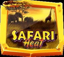 safari heat
