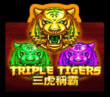 รีวิวเกม Triple Tigers