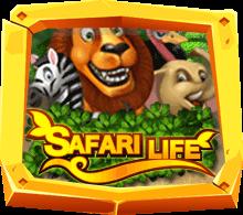 รีวิวเกม Safari Life