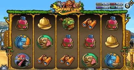 สัญลักษณ์ในเกม Safari Life